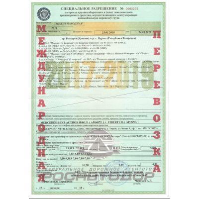 Международное разрешение